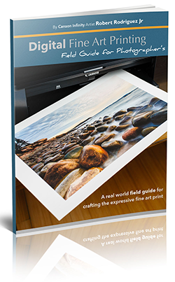 Digital Fine Art Printing ebook cover
