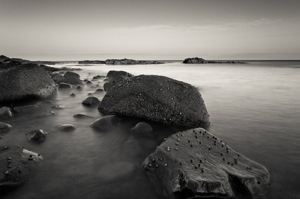 Rocks and Tide, NS